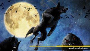 Legenda Manusia Serigala, Werewolf