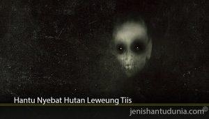 Hantu Nyebat Hutan Leweung Tiis